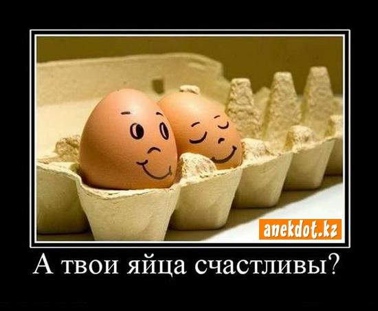 А твои яйца счастливы?