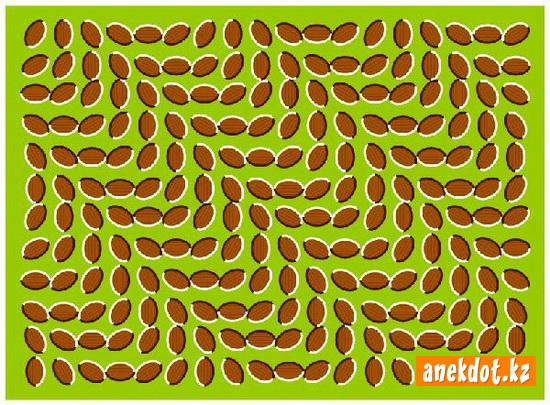 Визуальные иллюзии - овалы