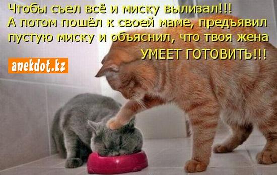 Чтобы съел все и миску вылизал! А потом пошел к своей маме, предъявил миску и объяснил, что твоя жена умеет готовить!