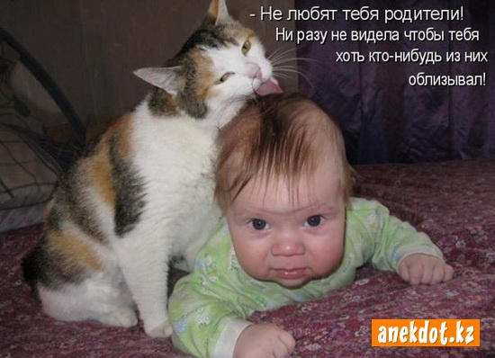 http://anekdot.kz/content/2010/10/ne-lyubyat-tebya-roditeli-ni-razu-ne-videla-chtoby-tebya-hot-kto-nibud-iz-nih-oblizyval.jpg