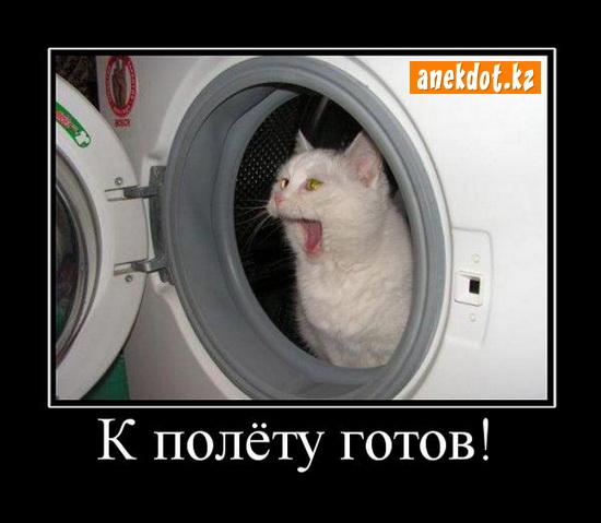 Кот сидит в стиральной машинке - к полету готов