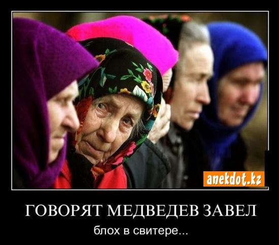 Говорят Медведев завел блох в свитере