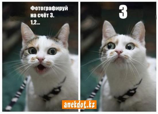 Фотографируй на счет 3. 1, 2… 3